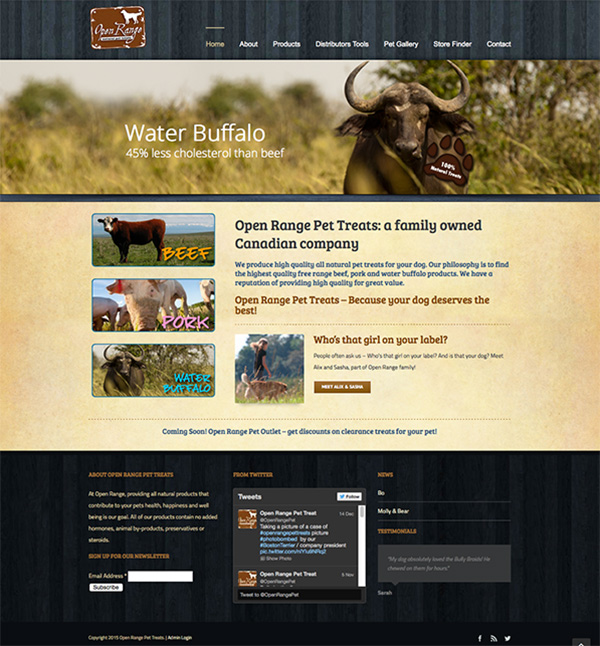 website package design open range