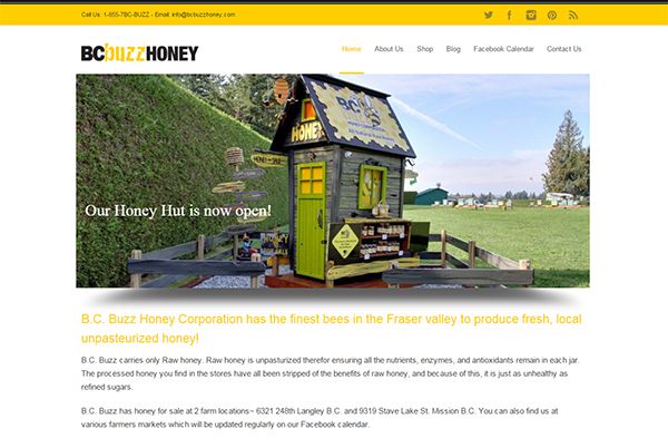 bc buzz website and package design